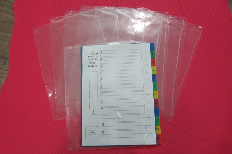 Túi hồ sơ nhựa dẻo 2 ngăn
